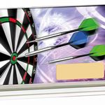 Darts Crystal Trophy GLM82